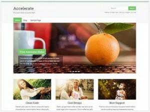 Accelerate Ecommerce WordPress theme