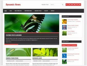 Dynamic News magazine WordPress theme