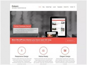 Esteem Ecommerce WordPress theme