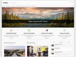 Evolve Ecommerce WordPress theme