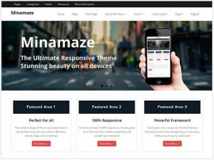 Minamaze Ecommerce WordPress theme