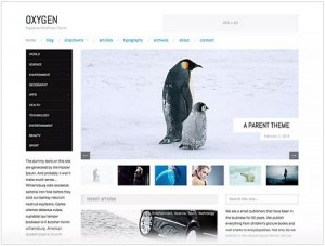 Oxygen magazine WordPress theme