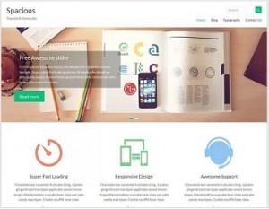 Spacious Ecommerce WordPress theme