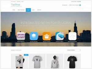 TopShop Ecommerce WordPress theme