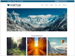 Virtue Ecommerce WordPress theme