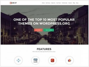 Zerif Lite Ecommerce WordPress theme