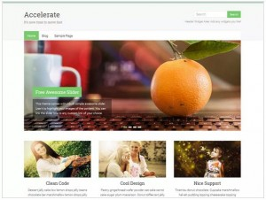 Accelerate WordPress themes for travel