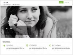 Alum theme for WordPress