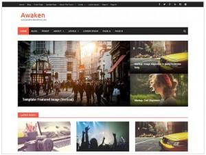 Awaken responsive WordPress themes for news