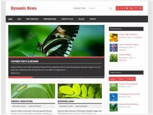 Dynaic News lite theme for WordPress