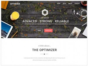 OptiMizer WordPress themes for Business