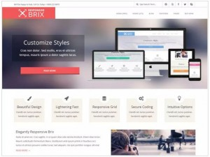 Responsive Brix theme for WordPress