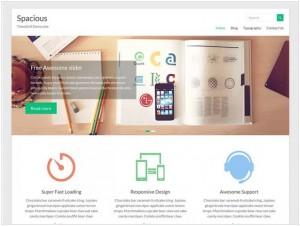 Spacious WordPress themes for Portfolio