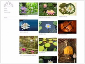 Water Lily theme for WordPress