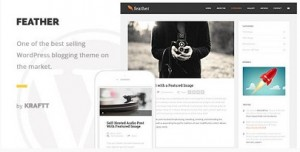 Feather claen and responsive woedpress theme for bloggers
