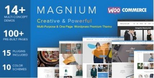 Magnium best responsive WordPress themes for ecommerce 2016
