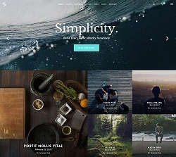 Salient responsive multipurpose theme for blogger