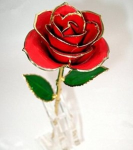 Valentine's day red rose gift 2016