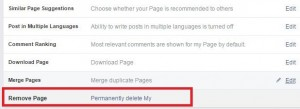 remove facebook page from account