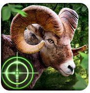 Wild hunder 3D game for android phone
