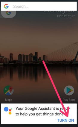 disable Google Assistant on Pixel XL phone