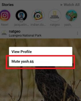 mute Instagram story on android phone