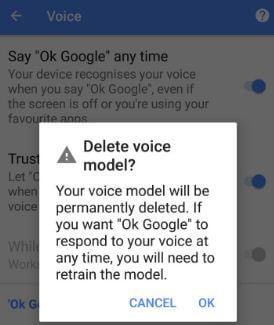 Delete Ok Google voice model in your Oreo device