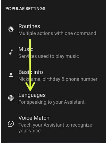 Fix Google Assistant Language Not Access