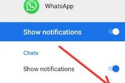 How to disable WhatsApp group notification in android 8 Oreo