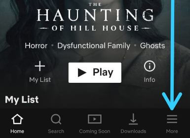 Access and change your Netflix app settings