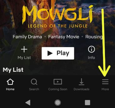 Netflix app in android devices