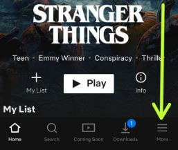Netflix app language change in android