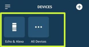 How to change the language on Alexa app