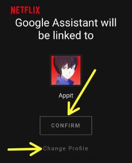 Link specific Netflix profiles to Google home