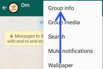Stop WhatsApp from saving photos to gallery android for specific contact