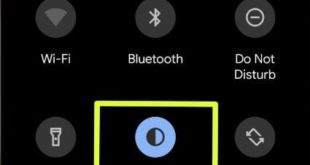How to disable dark mode on Android Q