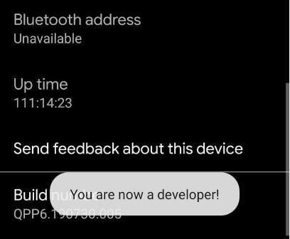 Enable developer mode in Android 10