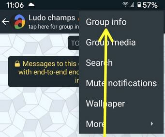 Change Group Info WhatsApp Android