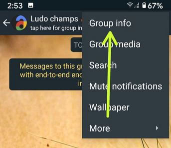 Edit group info on WhatsApp Android phone