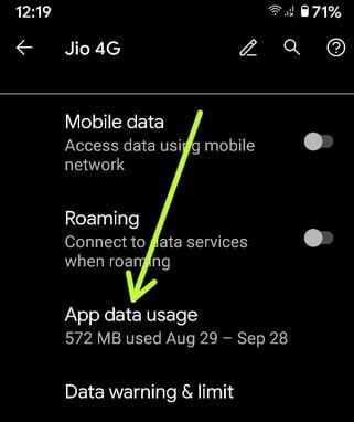 Pixel 4a App data usge settings
